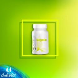 Nopalin - stabilizeaza glicemia